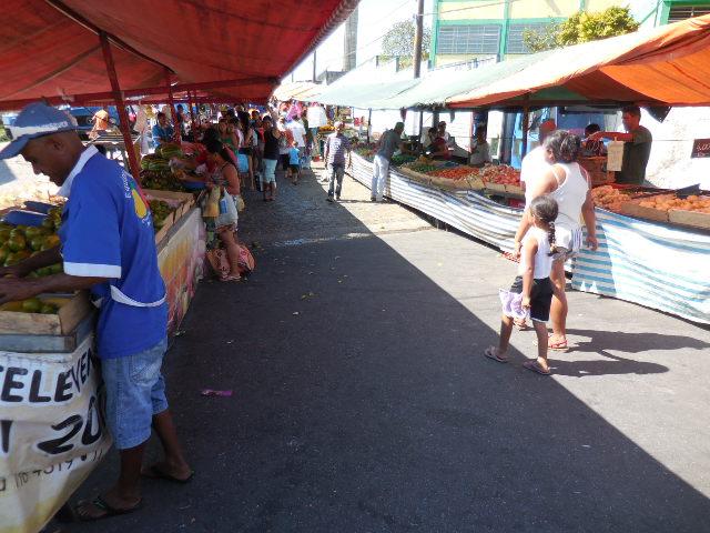 York Brazil Market